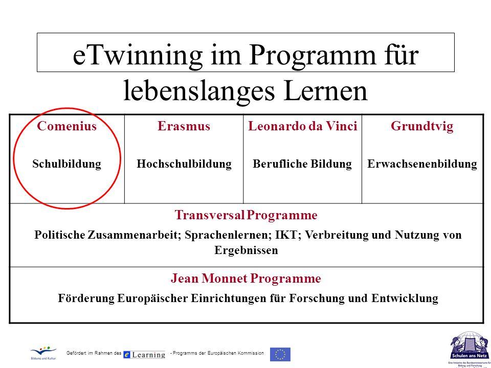 eTwinning im Programm für lebenslanges Lernen