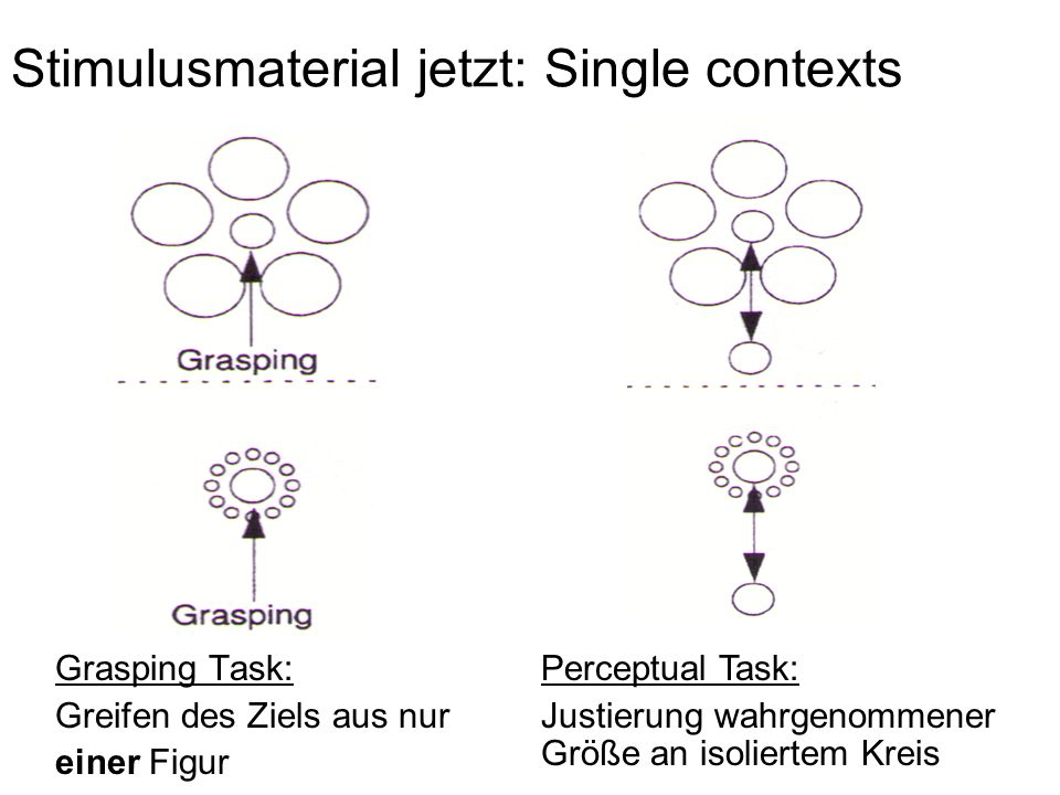Stimulusmaterial jetzt: Single contexts