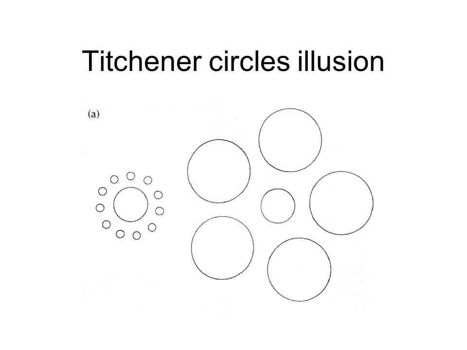 Titchener circles illusion