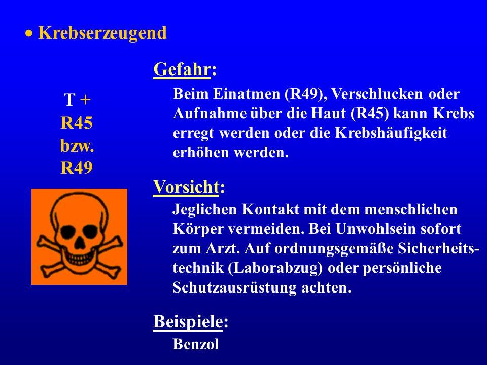  Krebserzeugend Gefahr: T + R45 bzw. R49 Vorsicht: Beispiele:
