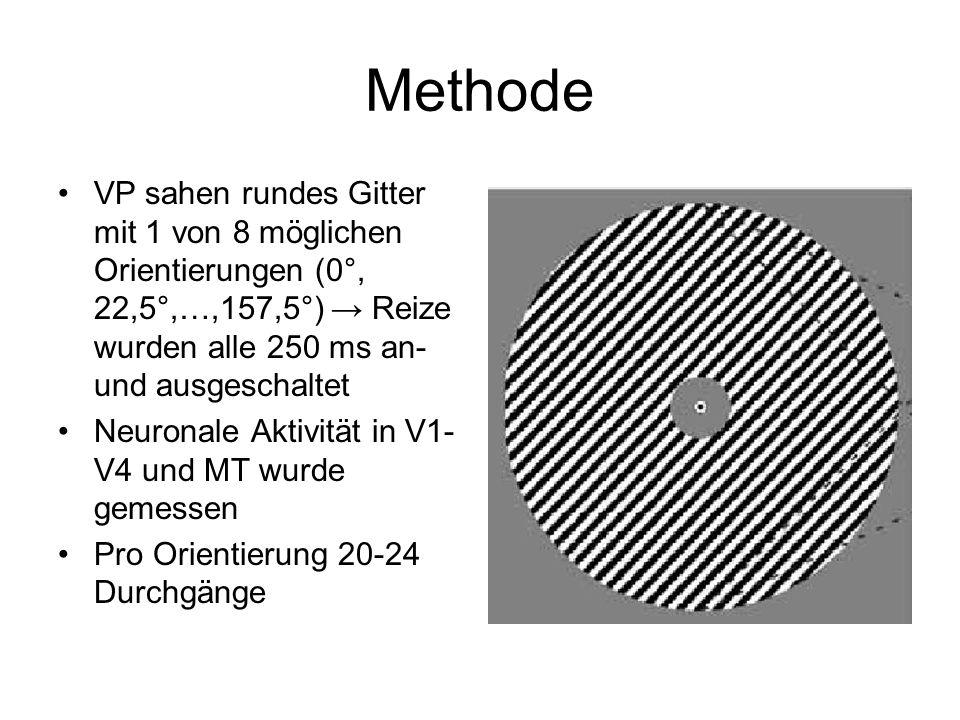 MethodeVP sahen rundes Gitter mit 1 von 8 möglichen Orientierungen (0°, 22,5°,…,157,5°) → Reize wurden alle 250 ms an- und ausgeschaltet.