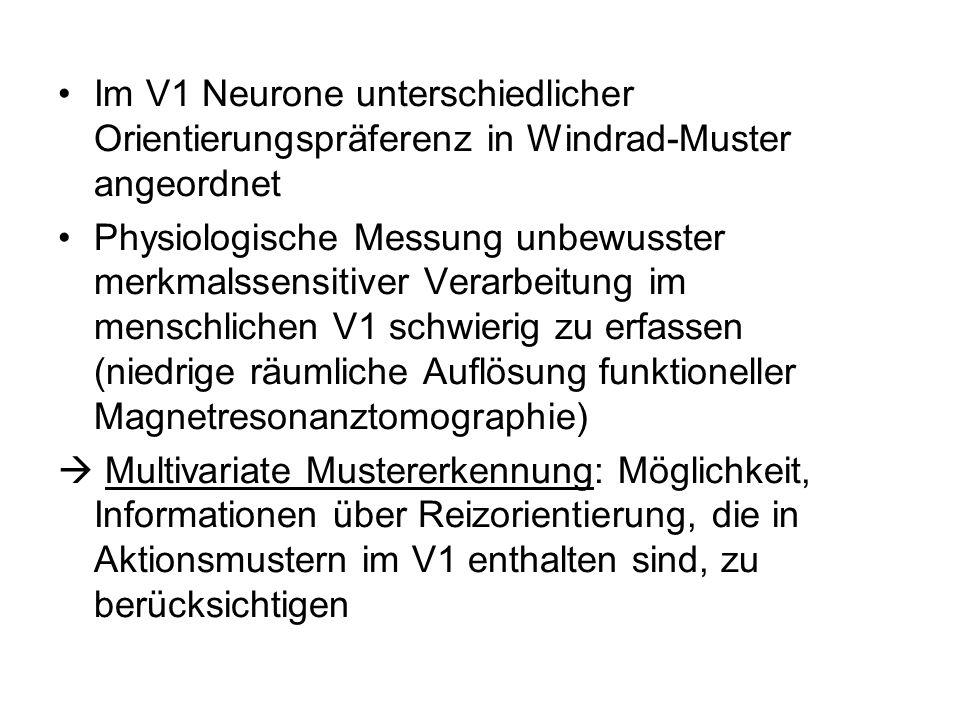 Im V1 Neurone unterschiedlicher Orientierungspräferenz in Windrad-Muster angeordnet