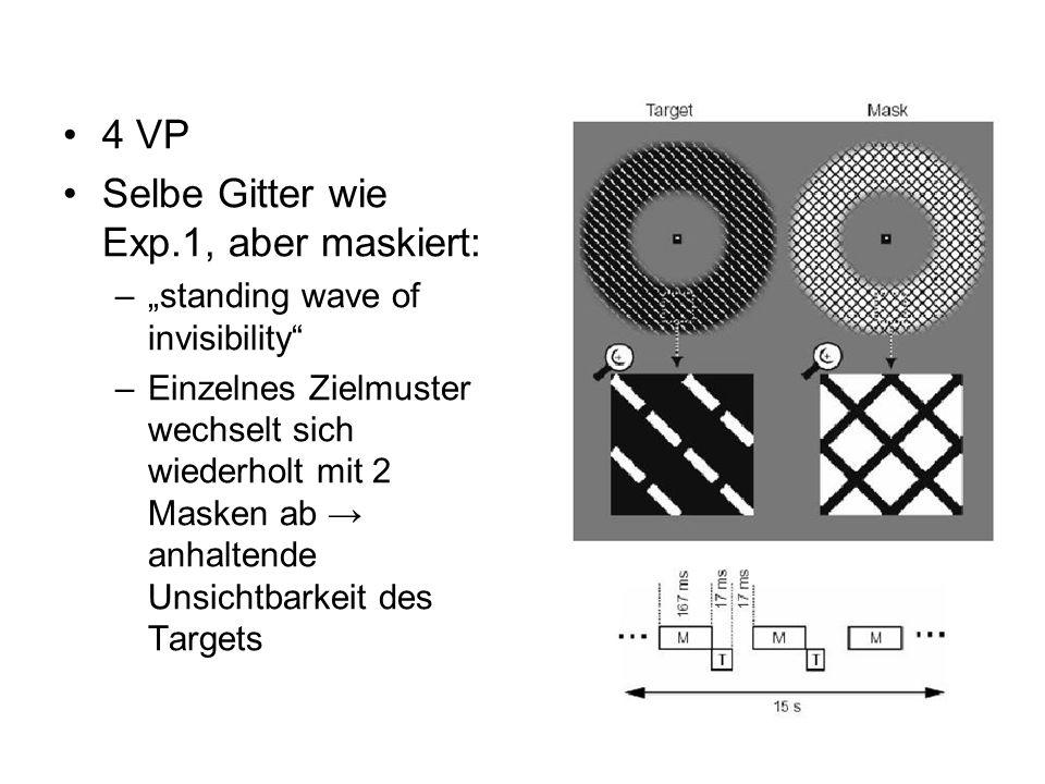 Selbe Gitter wie Exp.1, aber maskiert: