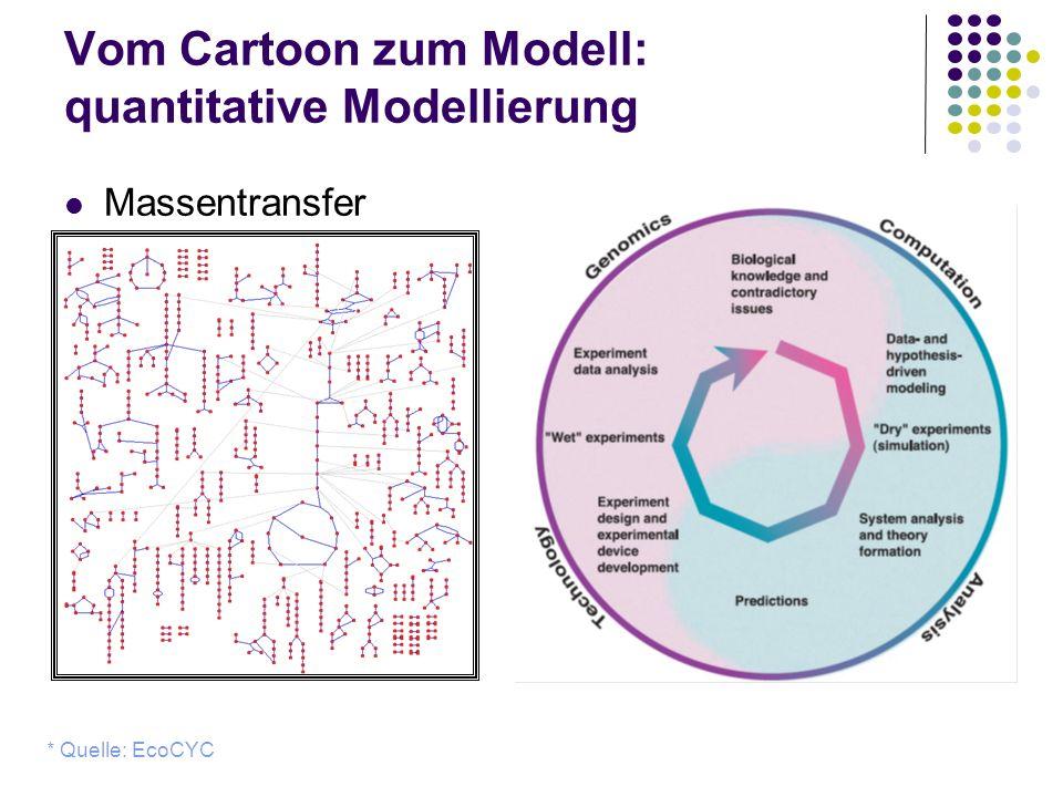 Vom Cartoon zum Modell: quantitative Modellierung