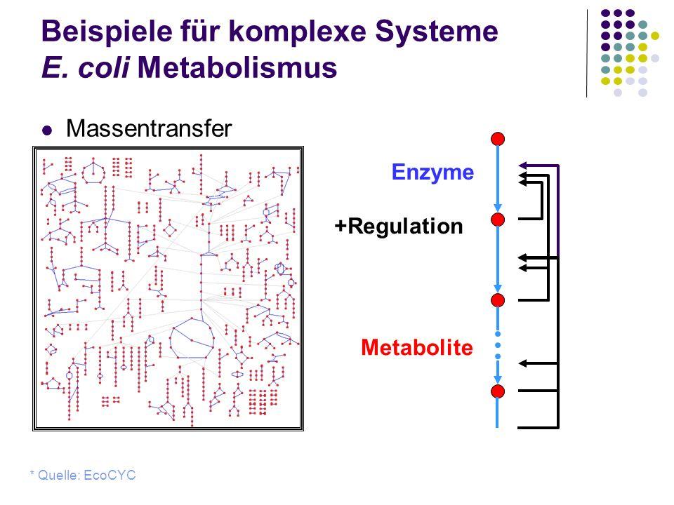 Beispiele für komplexe Systeme E. coli Metabolismus