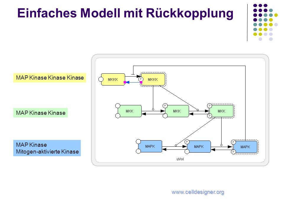 Einfaches Modell mit Rückkopplung