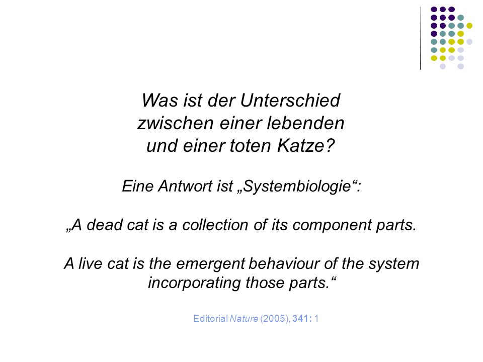 Was ist der Unterschied zwischen einer lebenden und einer toten Katze