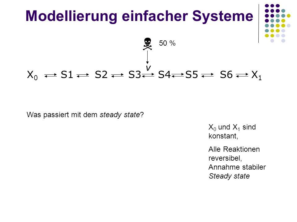 Modellierung einfacher Systeme