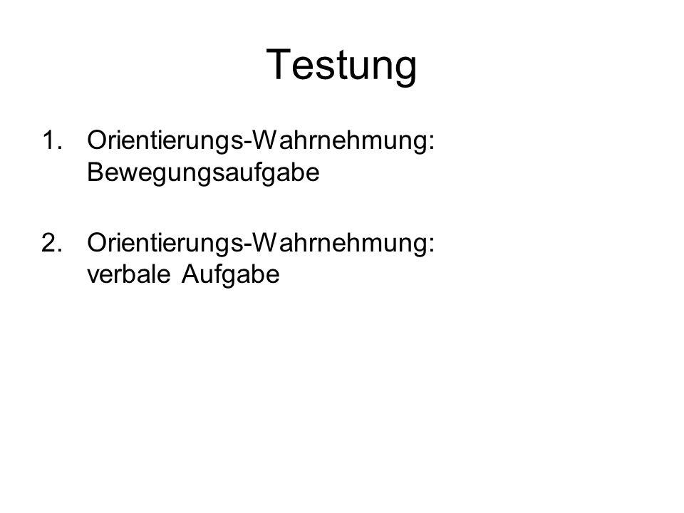 Testung Orientierungs-Wahrnehmung: Bewegungsaufgabe