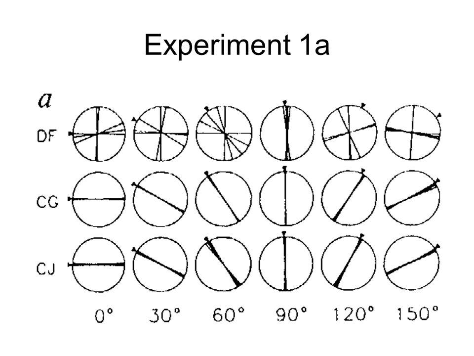 Experiment 1a