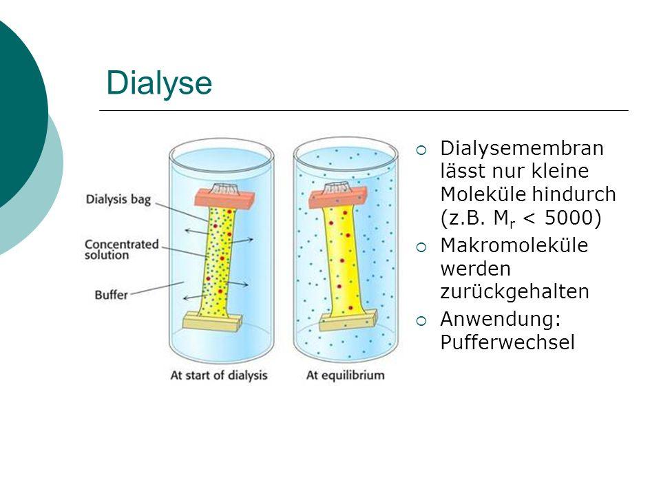 Dialyse Dialysemembran lässt nur kleine Moleküle hindurch (z.B. Mr < 5000) Makromoleküle werden zurückgehalten.
