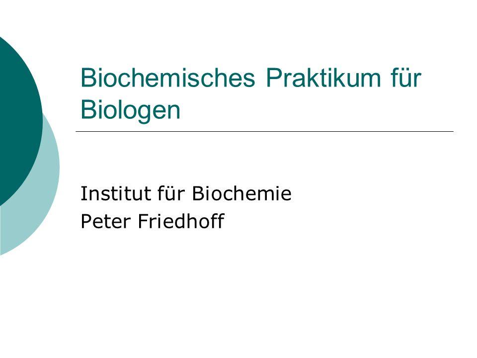 Biochemisches Praktikum für Biologen