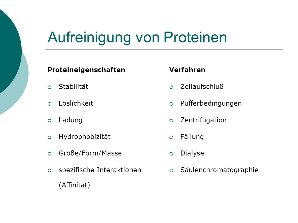 Aufreinigung von Proteinen