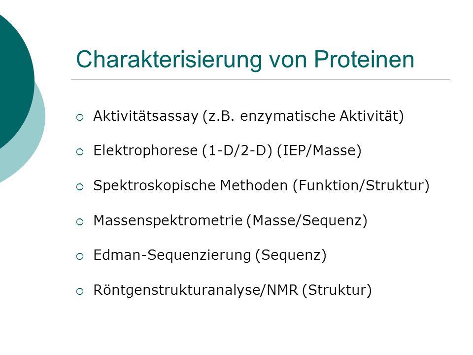 Charakterisierung von Proteinen