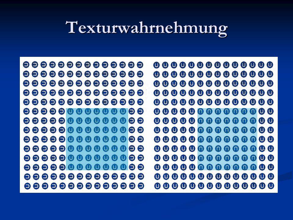 Texturwahrnehmung Rechts: nicht unterscheidbare Texturpaare