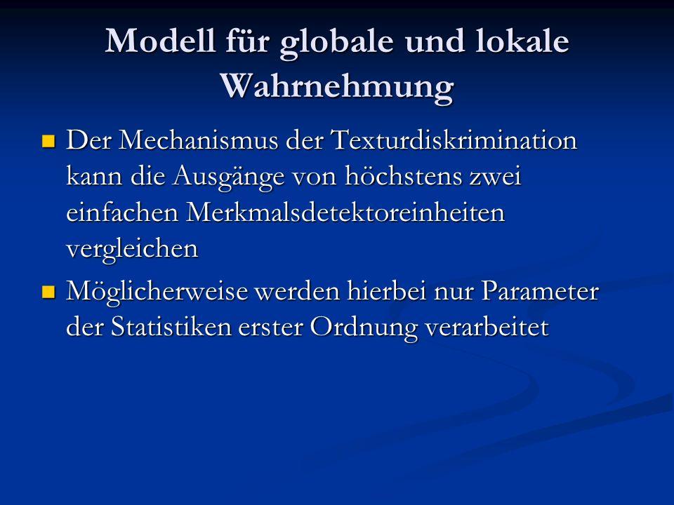 Modell für globale und lokale Wahrnehmung
