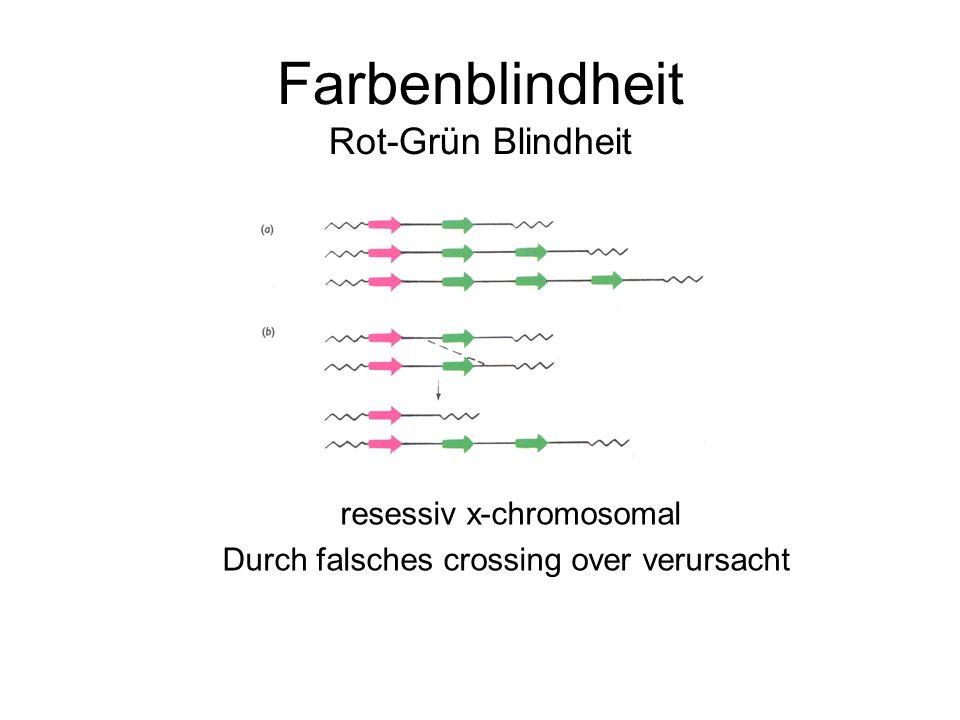 Farbenblindheit Rot-Grün Blindheit