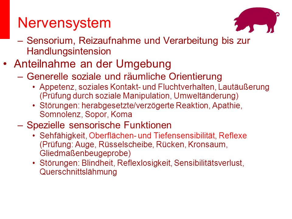 Nervensystem Anteilnahme an der Umgebung