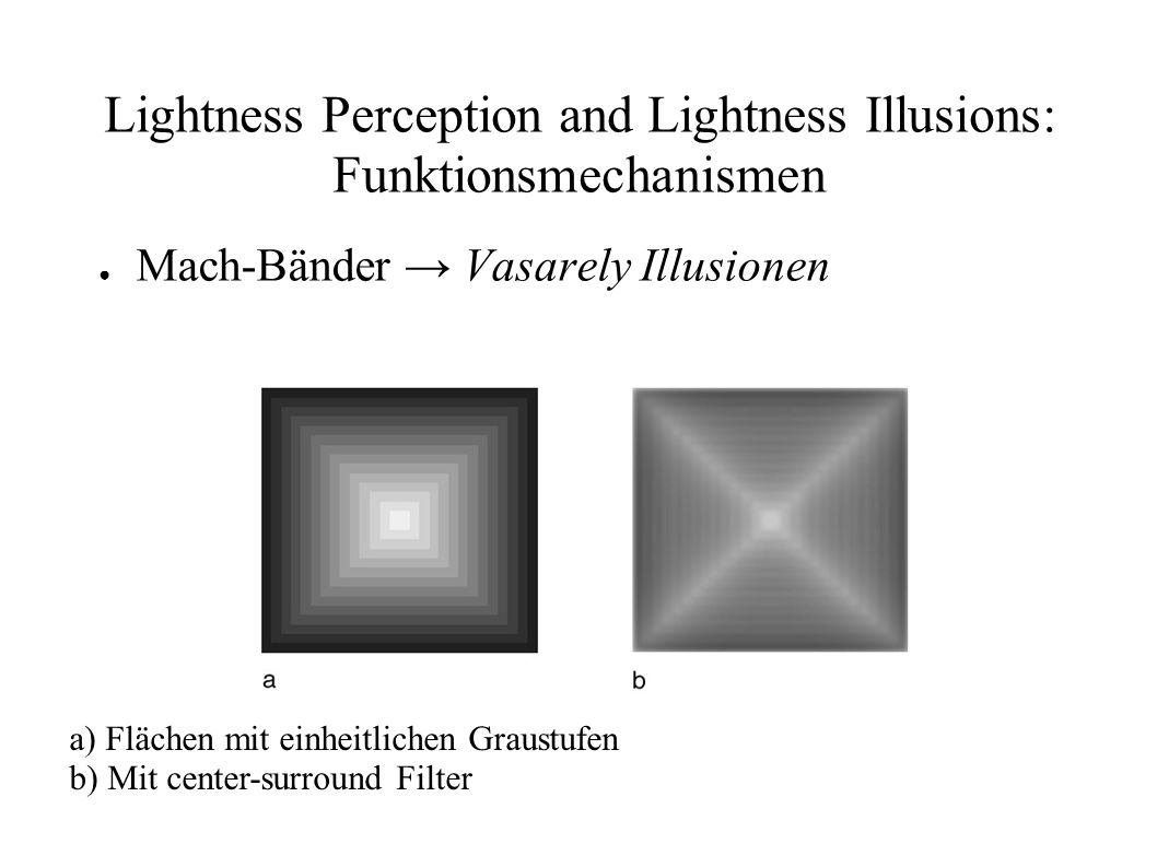 Lightness Perception and Lightness Illusions: Funktionsmechanismen