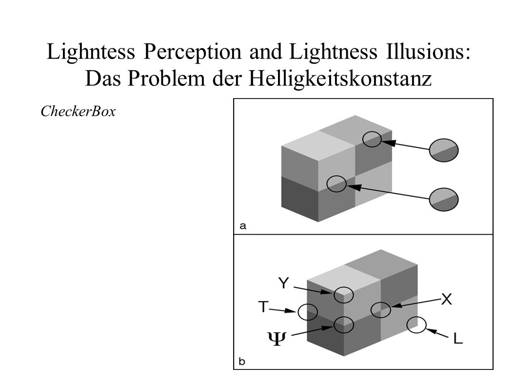Lighntess Perception and Lightness Illusions: Das Problem der Helligkeitskonstanz