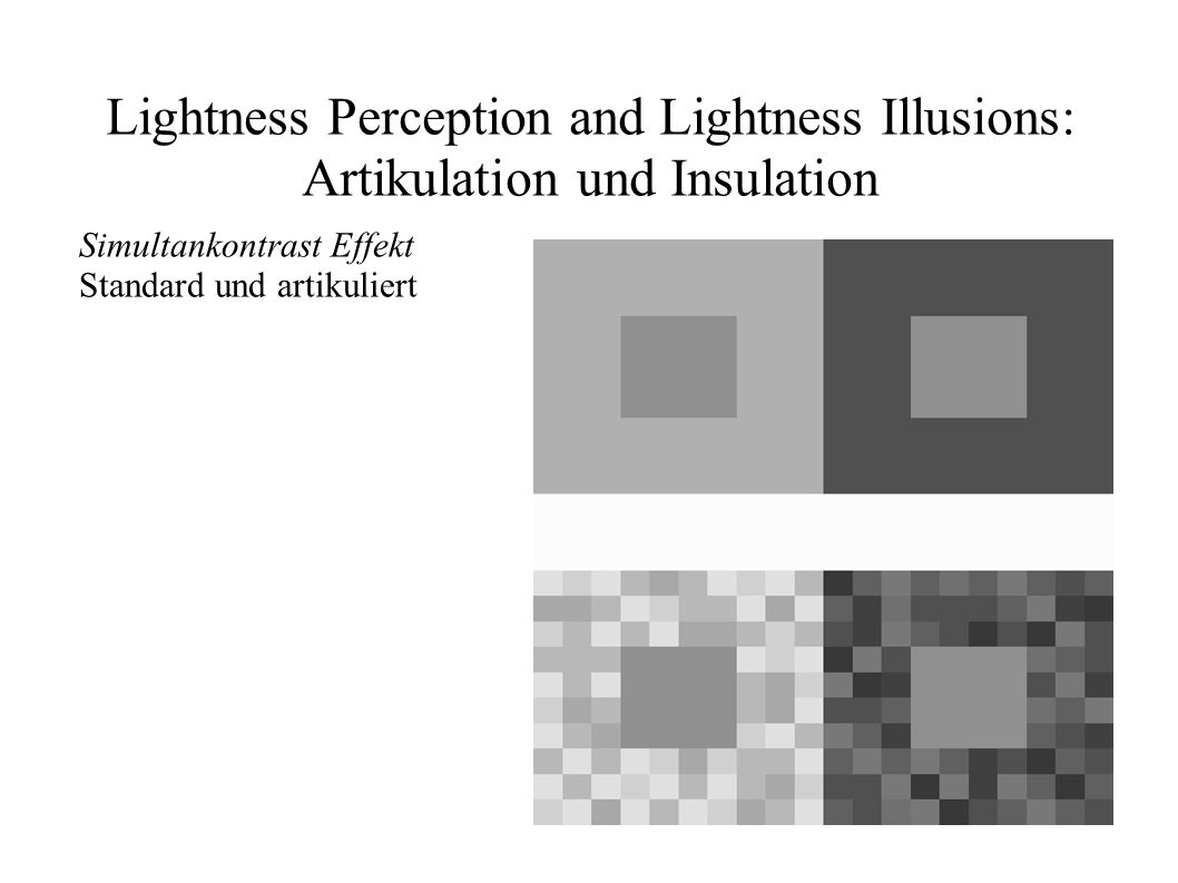 Lightness Perception and Lightness Illusions: Artikulation und Insulation