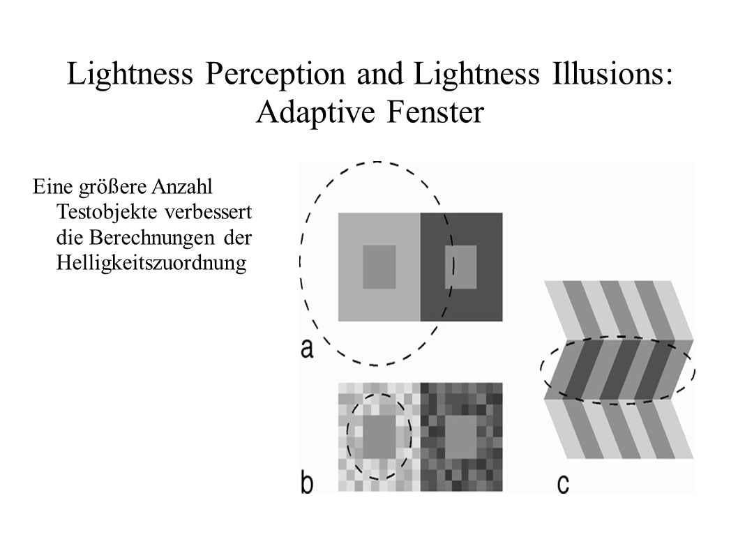 Lightness Perception and Lightness Illusions: Adaptive Fenster