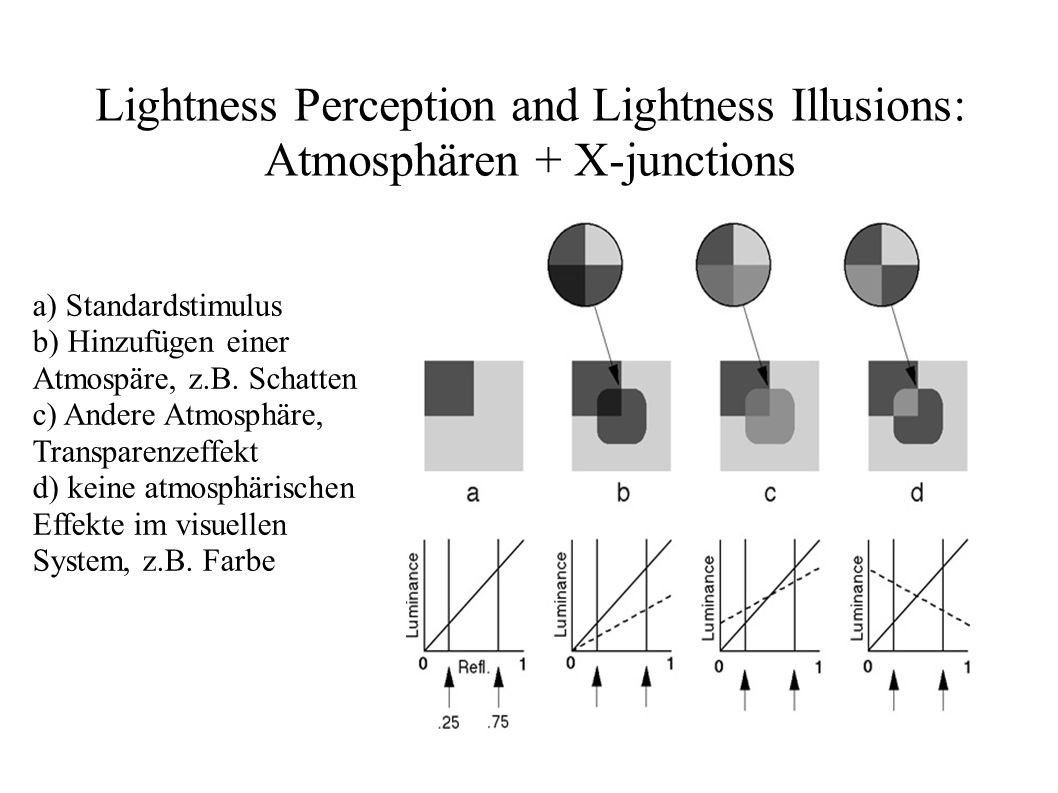 Lightness Perception and Lightness Illusions: Atmosphären + X-junctions