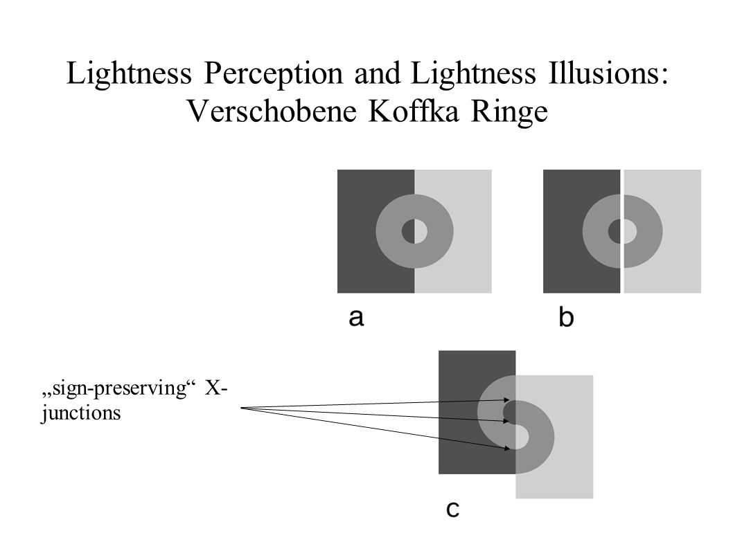 Lightness Perception and Lightness Illusions: Verschobene Koffka Ringe
