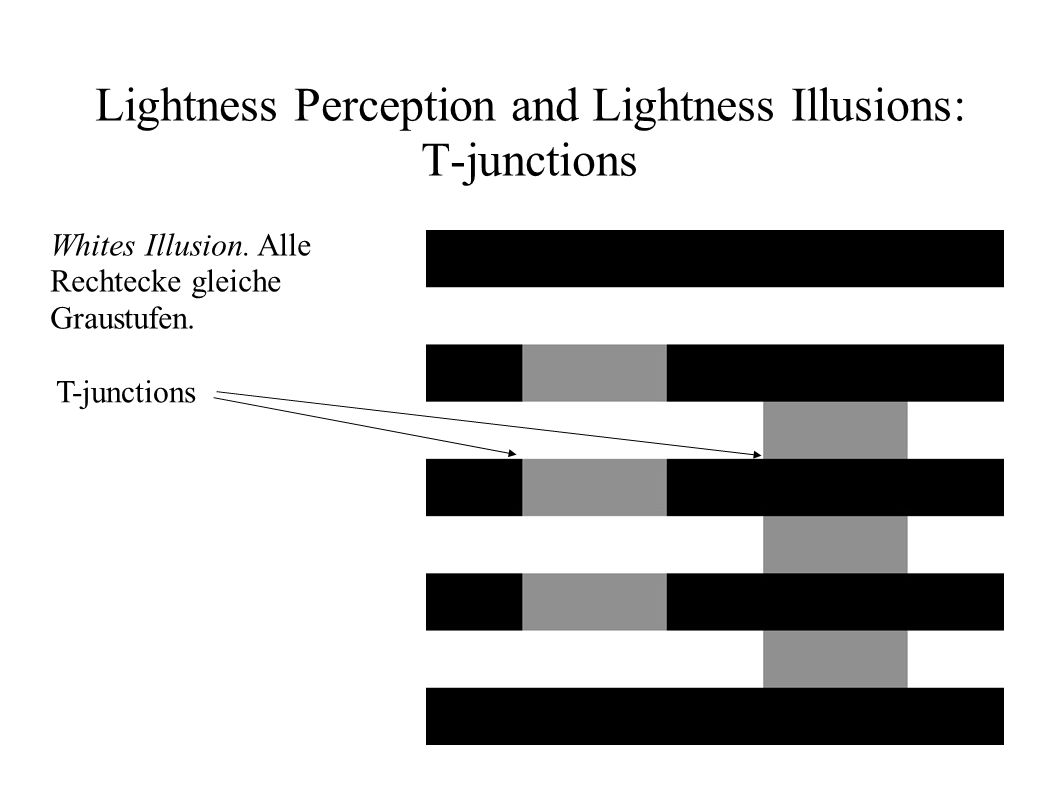 Lightness Perception and Lightness Illusions: T-junctions