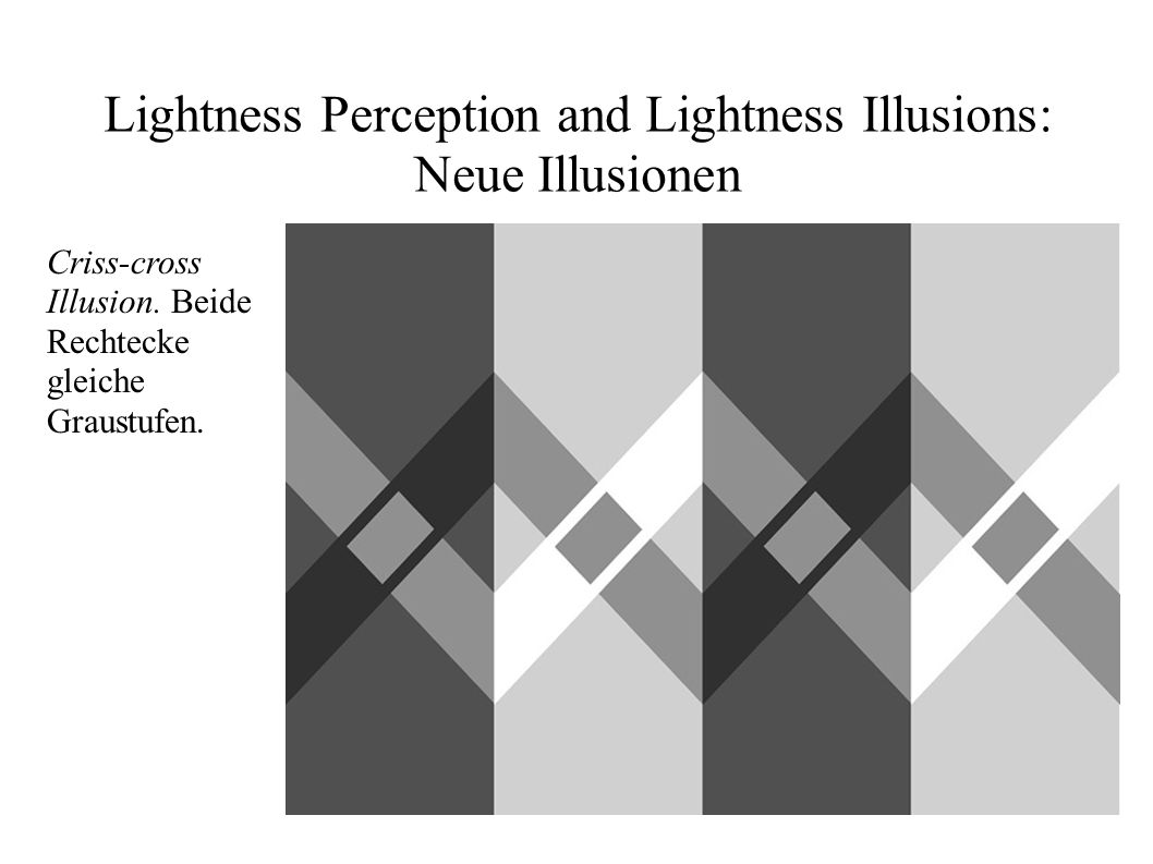 Lightness Perception and Lightness Illusions: Neue Illusionen