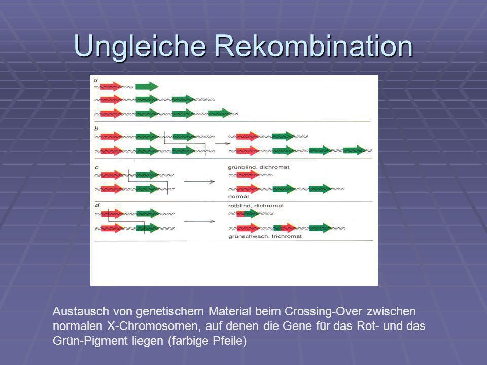 Ungleiche Rekombination