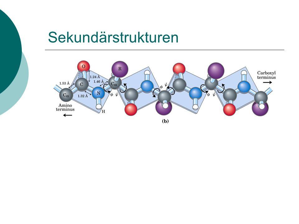 Sekundärstrukturen