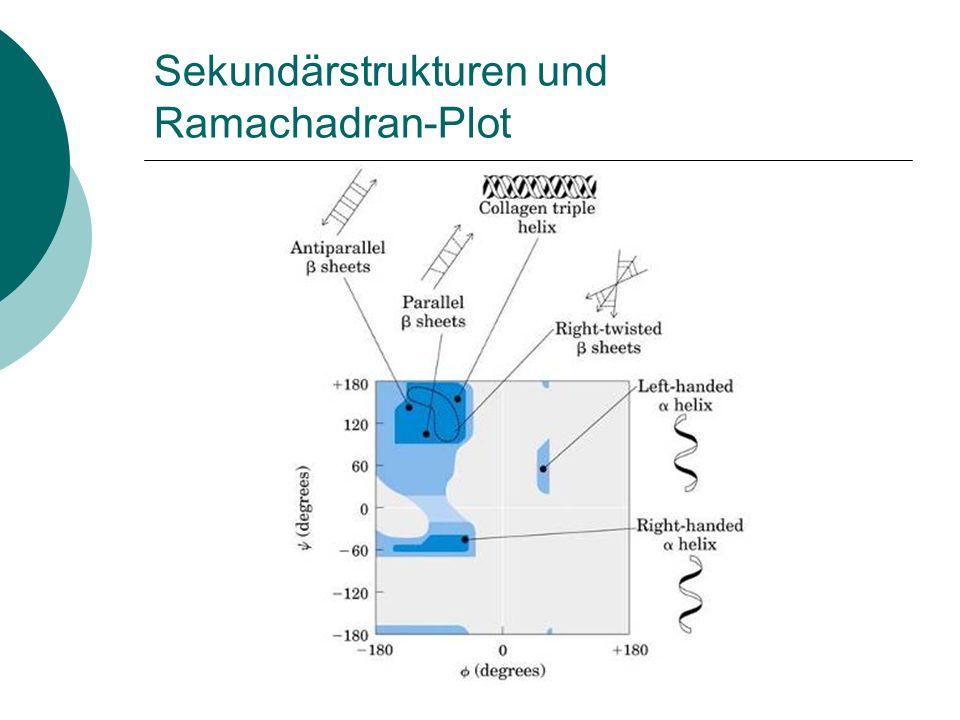 Sekundärstrukturen und Ramachadran-Plot