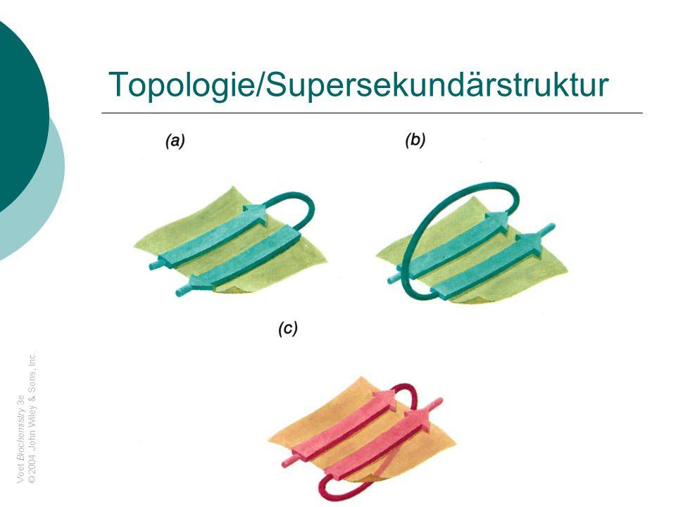 Topologie/Supersekundärstruktur