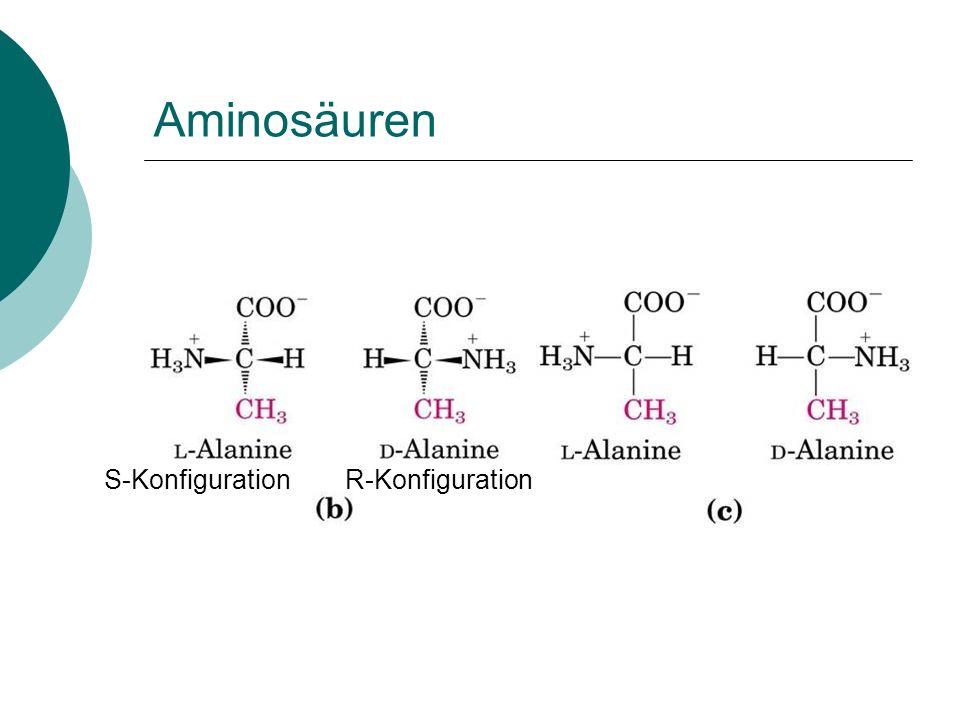 Aminosäuren S-Konfiguration R-Konfiguration