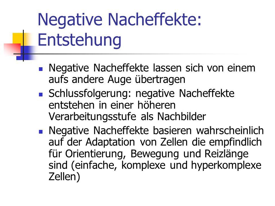 Negative Nacheffekte: Entstehung