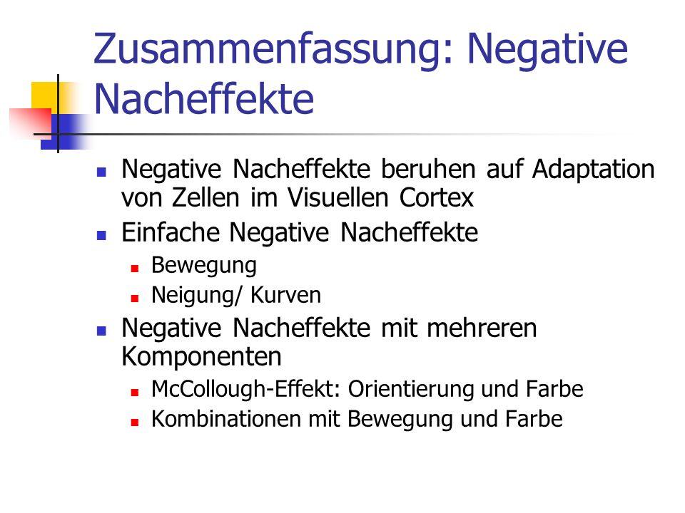 Zusammenfassung: Negative Nacheffekte