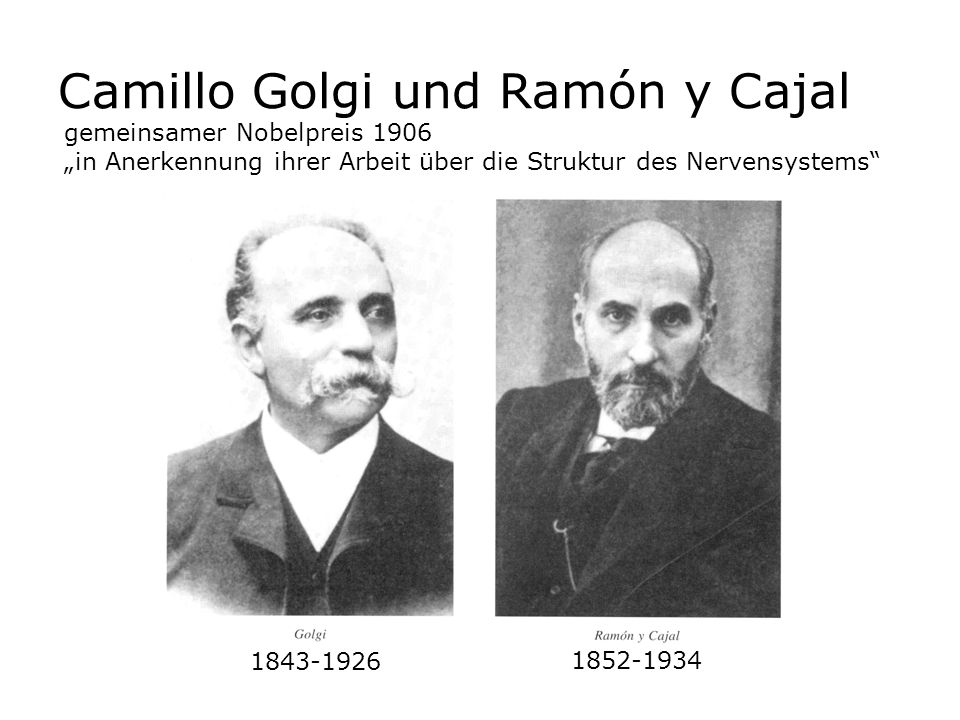 Camillo Golgi und Ramón y Cajal