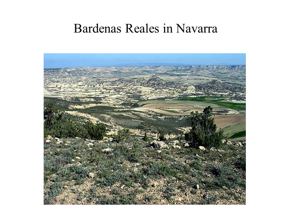 Bardenas Reales in Navarra
