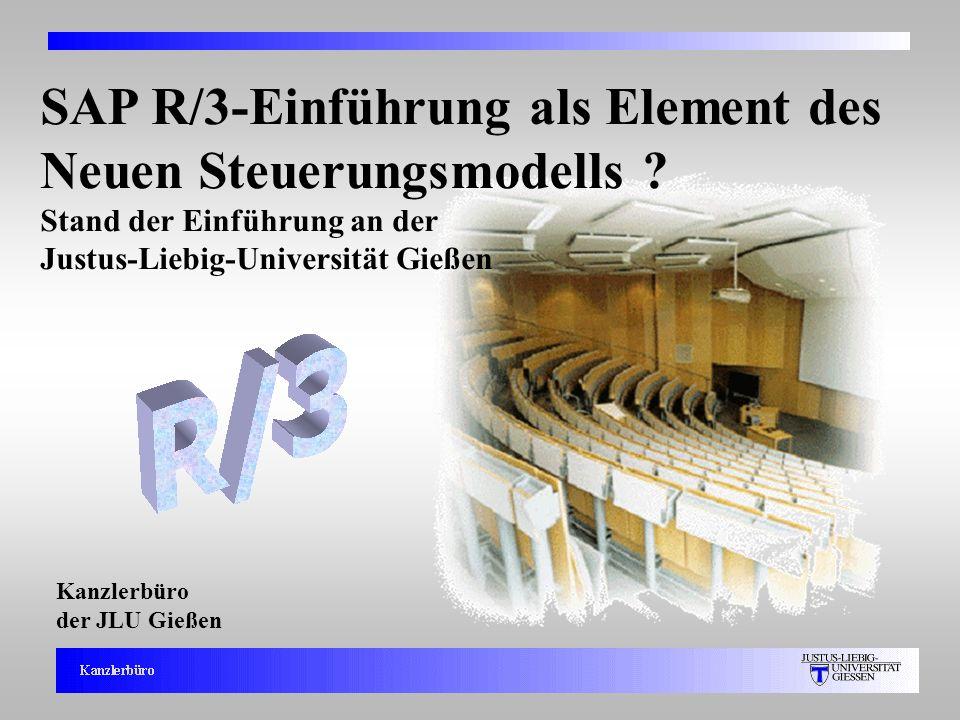 SAP R/3-Einführung als Element des Neuen Steuerungsmodells