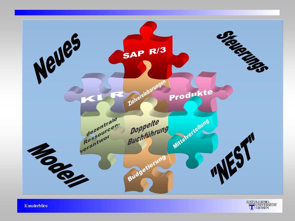 Steuerungs Neues NEST Modell SAP R/3 Zielvereinbarungen Produkte KLR
