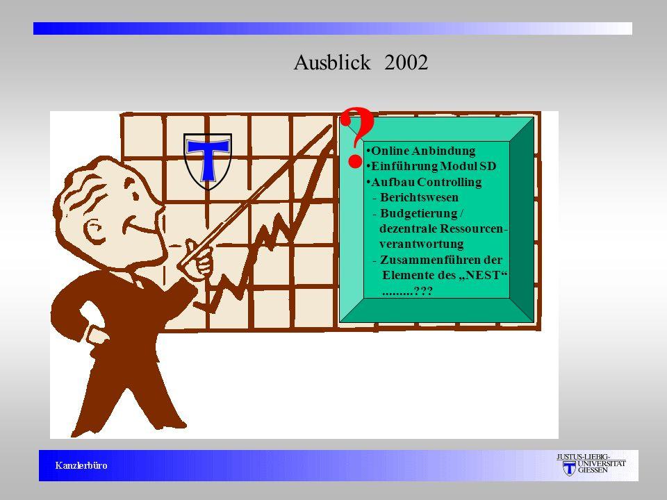 Ausblick 2002 Online Anbindung Einführung Modul SD