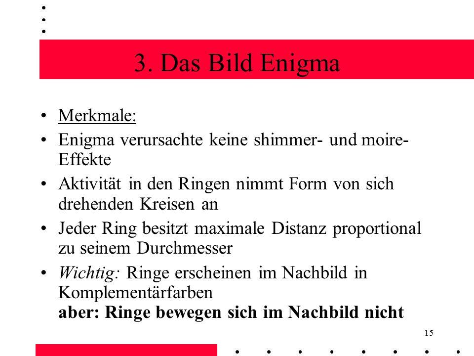 3. Das Bild Enigma Merkmale: