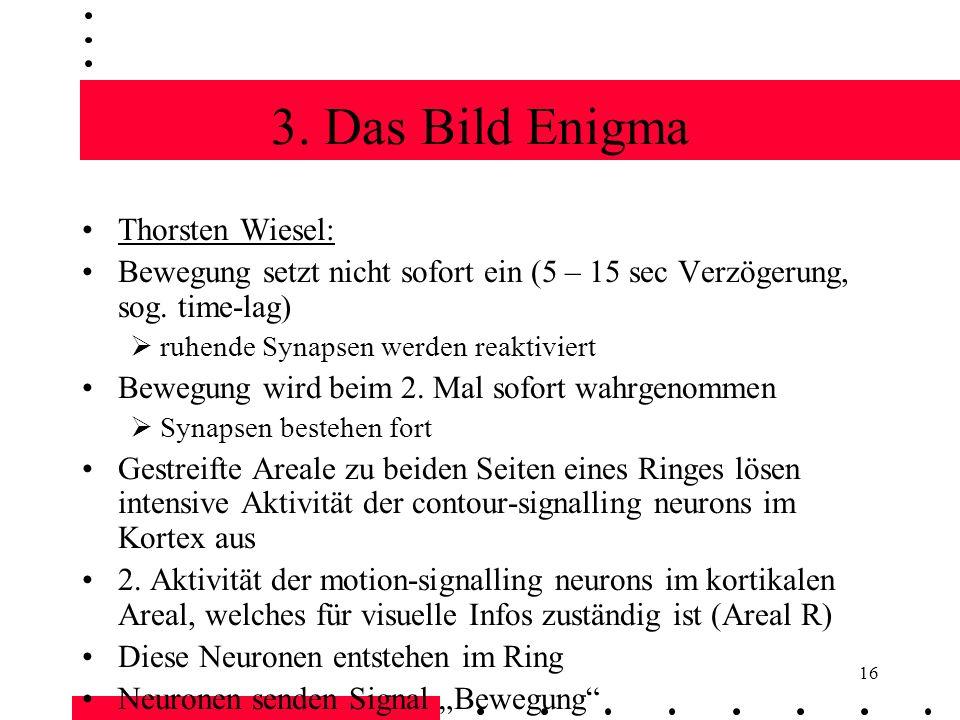 3. Das Bild Enigma Thorsten Wiesel: