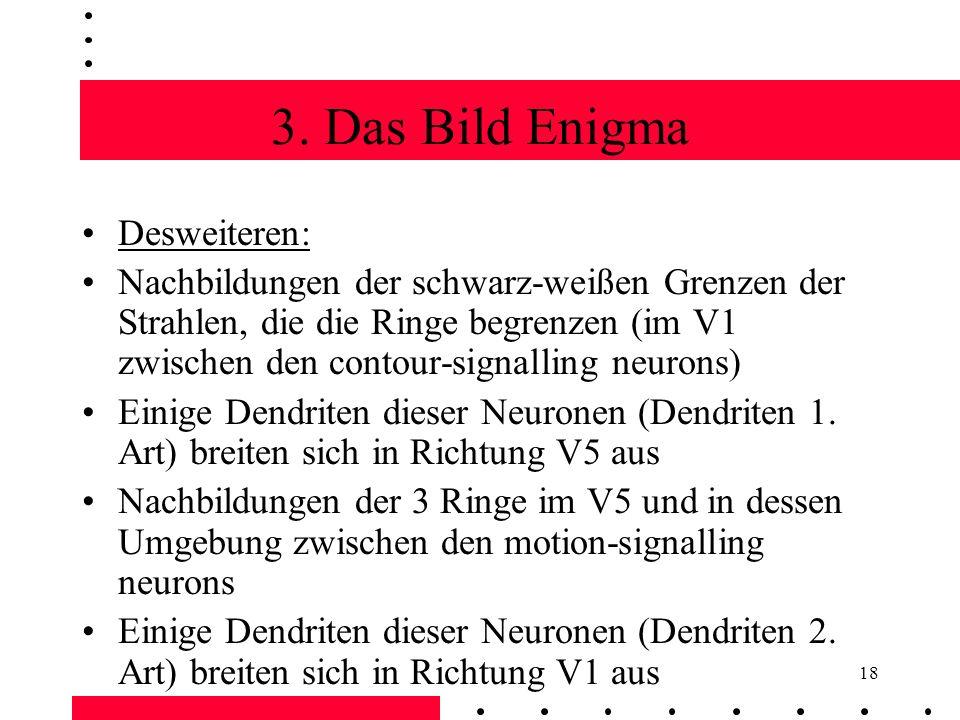 3. Das Bild Enigma Desweiteren: