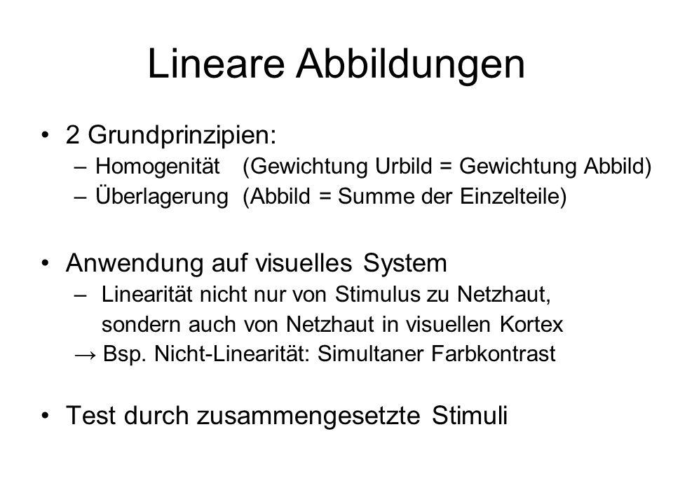 Lineare Abbildungen 2 Grundprinzipien: Anwendung auf visuelles System
