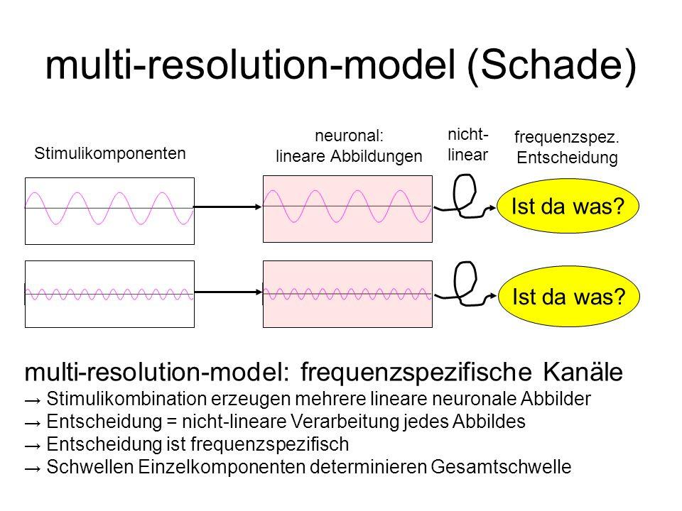 multi-resolution-model (Schade)