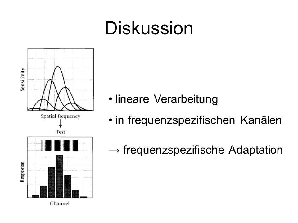 Diskussion lineare Verarbeitung in frequenzspezifischen Kanälen
