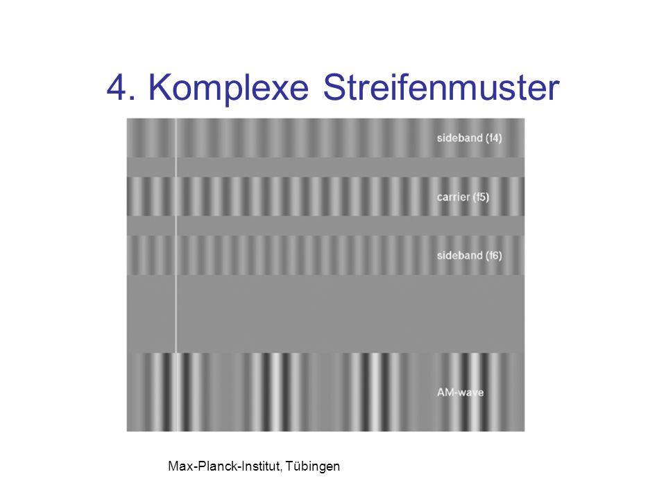 4. Komplexe Streifenmuster