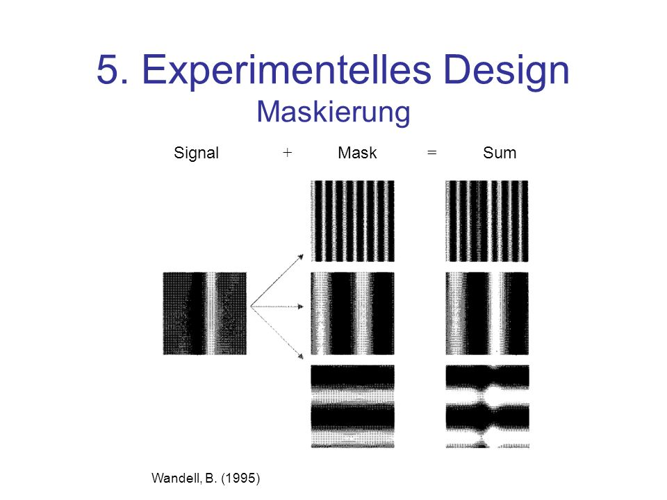 5. Experimentelles Design Maskierung